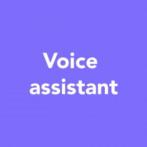 voice-assistant